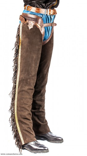 Chaps with Studs